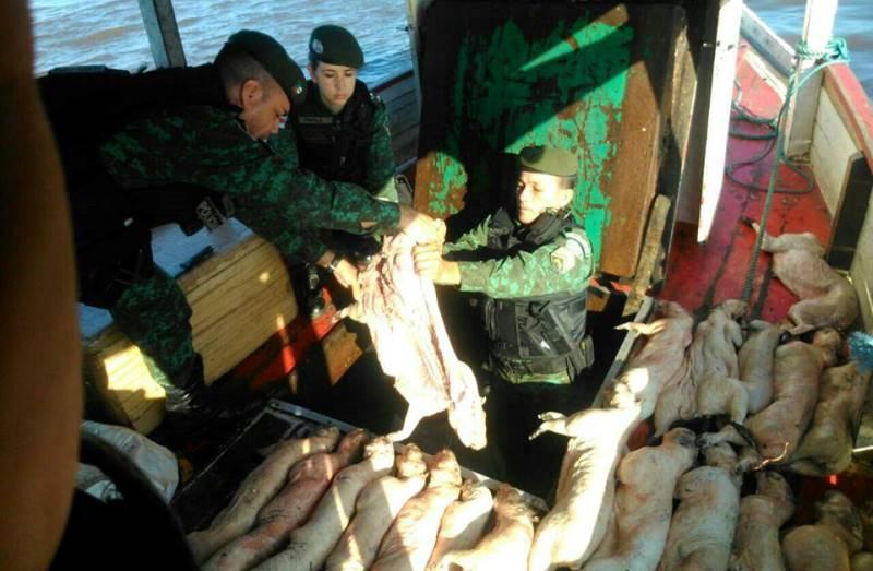 Equipe do Batalhão Ambiental apreendeu cerca de uma tonelada de carne de animais silvestres, no último dia 9, na barreira montada próximo à Ponte Rio Negro (Foto: Divulgação)