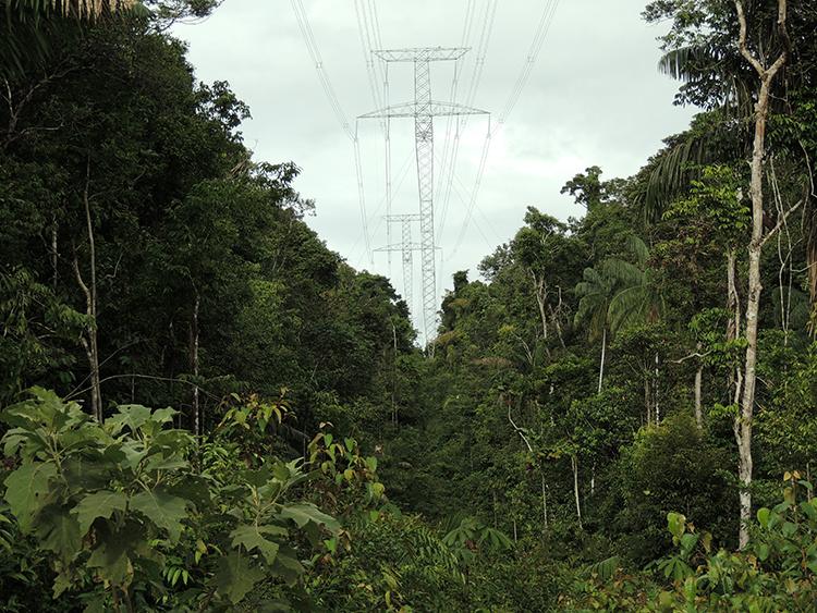 O presidente da Amazonas Energia afirma que a dificuldade para instalar a linha de transmissão na floresta e rios da Amazônia torna o processo demorado (Foto: Ana Blanc/Ibama-AP)