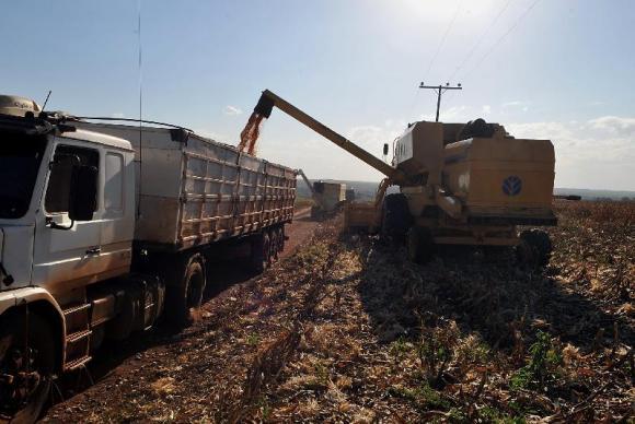 lavoura A plantação de soja deve crescer 3,6% na safra 20152016Valter CampanatoAgência Brasil
