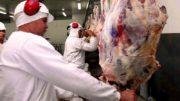 Da criação do gado ao corte final, a carne halal segue critérios específicos para muçulmanos (Foto: Divulgação)