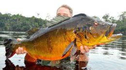 Atividade turística como a pesca esportiva precisa de autorização dos indígenas, diz MPF (Foto: Fishing business/Divulgação)