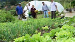 Agricultura (Foto: Carlos Alberto/ Imprensa MG/Fotos Públicas)
