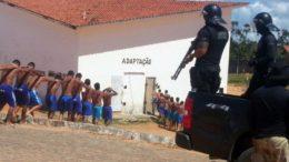 lcaçuz (Foto: Sejuc-RN/Divulgação)