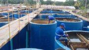 Estação de Tratamento de Água de Tabatinga gerido pela Cosama (Foto: Divulgação/TCE)