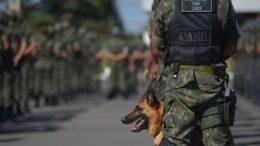 Um efetivo de 1.500 militares guarda 9.762 Km de fronteira com Venezuela, Colômbia, Peru e Bolívia  (Foto: Marcelo Casal Jr./ABr)