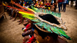 Indígenas Mayke Toscano