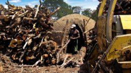 Pobreza (Foto: MTE/Divulgação)