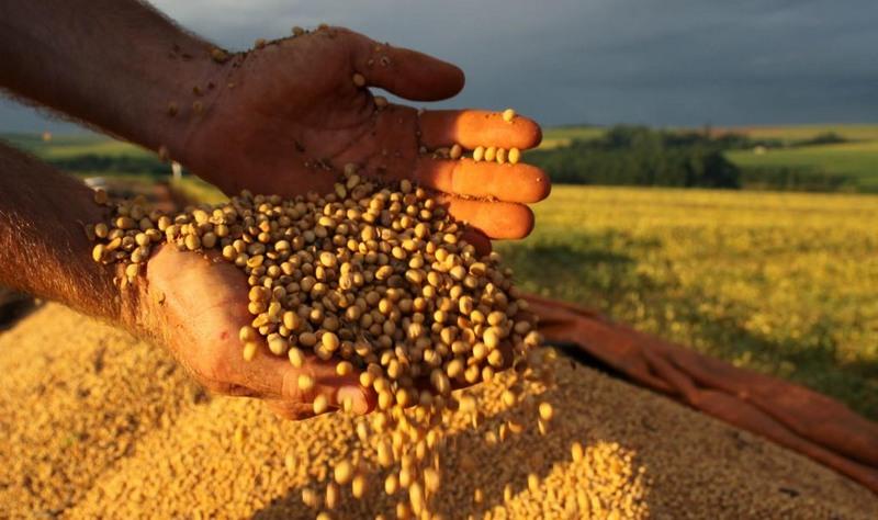 Embrapa define sete eixos para a agricultura brasileira até 2030