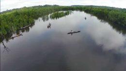 Os biomas brasileiros serão o ponto central da discussão da Campanha da Fraternidade 2017 (Foto: Reprodução)