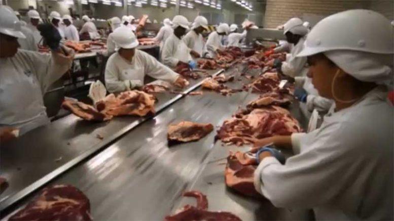 Carne-Fraca