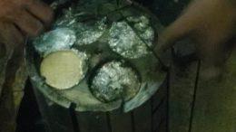 Cocaína MPF (Foto: PF/Divulgação)
