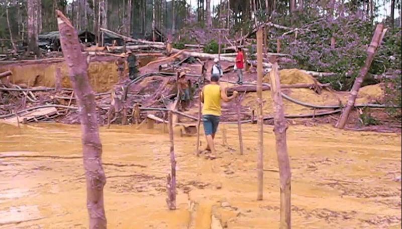 MPF apura responsabilidade sobre dano ambiental em extração ilegal de ouro