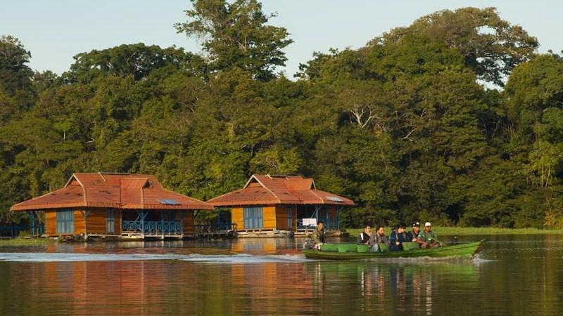 Reserva de Desenvolvimento Sustentável Mamirauá, no Amazonas (Foto: Divulgação)