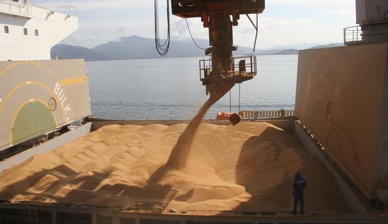 Soja grãos (Foto: Fabio Scremin/APPA/Fotos Públicas)