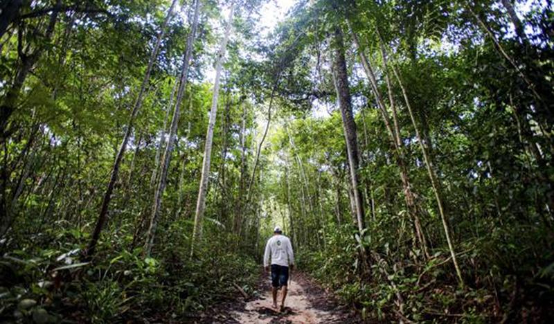 Justiça manda parar obras viárias em área ambiental de Manaus