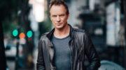 Sting fará única apresentação em São Paulo, no dia 6 de (Foto: Divulgação)