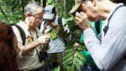 Botânica nova planta Amazônia (Foto: Ascom/UNIR)