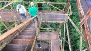 Inpa torre floresta (Foto: Guigo e Museu na Floresta/Divulgação)