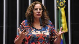 Jandira Feghali (Foto: Luís Macedo/Ag. Câmara)