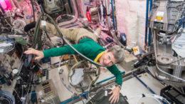 (Foto: Nasa/Johnson Space Center/Agência Lusa)