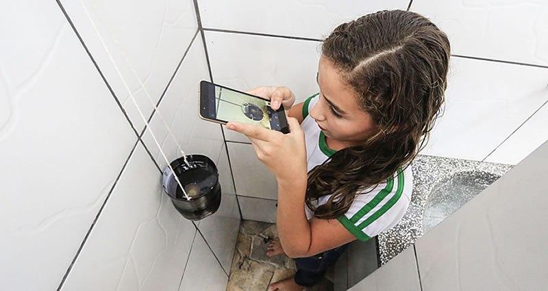 Aedes Aegypit WWF-Brasil (Foto: WWF-Brasil/Divulgação)