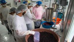 Agricultores receberam equipamentos e treinamentos para produzir as polpas (Foto: Amanda Lelis/Divulgação)