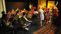 Orquestra trabalha formação de jovens músicos na especialidade de instrumentos de cordas (Foto: SEC/Divulgação)