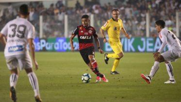 Árbitro Pedro Vuaden marcou pênalti e depois anulou a própria decisão no jogo entre Santos e Flamengo (Foto: Gilvan de Souza/Flamengo)