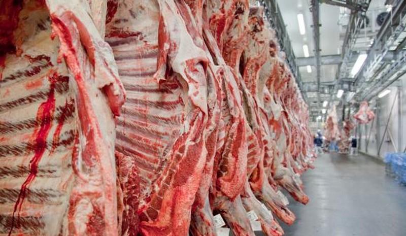 Mesmo com recorde, Brasil perde participação no mercado mundial de carnes