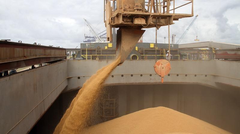 Soja domina as exportações de grãos no Porto de Paranaguá (Foto: Fabio Scremin/APPA)