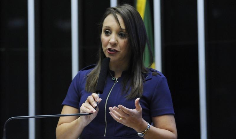 Renata Abreu diz que intenção é impedir candidatura de juízes e procuradores (Foto: Lúcio Bernardo Jr./Ag. Câmara)