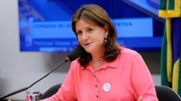 Senadora Carmen Zanotto ampliou o benefício às entidades beneficentes que prestam serviço ao SUS (Foto: Lúcio Bernardo Jr./Câmara dos Deputados)