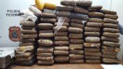 PF intensificou operações e quantidade de drogas apreendidas em aeroportos de Manaus e Santarém aumentou (Foto: PF/Divulgação)
