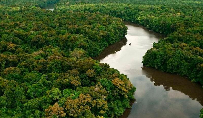 Projeto reduz área de preservação da Amazônia Legal