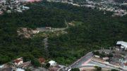 Parque Sumaúma é a primeira Unidade de Conservação urbana de Manaus (Foto: Google/Divulgação)