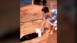 Vídeo divulgado em rede social mostra mulher jogando cachorro no bueiro (Foto: YouTube/Reprodução)