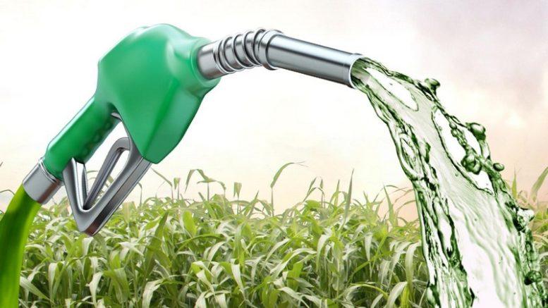 Biocombustível teve alta em 18 Estados. Amazonas registrou o índice mais alto de reajuste (Foto: Reprodução)