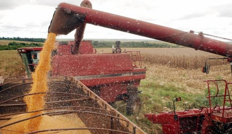 Estimativa para safra de grãos deste ano é menor que a registrada em 2017
