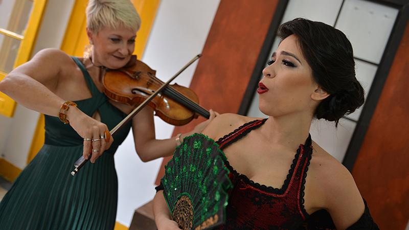 Secretaria de Cultura lança projeto 'Ópera Delivery'