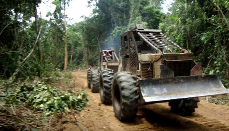 MPF dá cinco dias ao Incra para pedir reintegração de terras no Pará