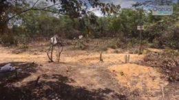 Terreno que invasores alegam ser da Itautinga, na zona leste de Manaus, foi invadido (Foto: ATUAL)