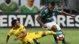 Palmeiras sofreu empate no finalzinho, mas lidera Grupo H da Libertadores (Foto: Cesar Greco/Ag. Palmeiras/Divulgação)