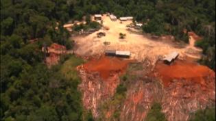 Especialistas destacam avanços, mas temem efeitos do desmatamento