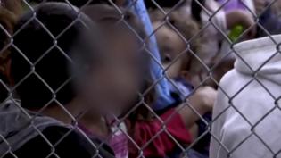 Missão brasileira vai acompanhar crianças separadas dos pais nos EUA