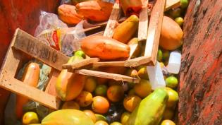 Seis em cada dez brasileiros assumem desperdício de alimentos, diz pesquisa