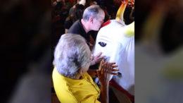 Ciro Gomes beija o Bumbá Garantido em visita a Parintins. Boi foi derrotado pelo rival Caprichoso no festival folclórico (Foto: Divulgação)
