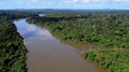 Piloto disse que fez pouso de emergência e abandonou avião no Rio Jamanxim (Foto: Vicente Mendonça/Ibama)