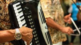Sanfona dita o ritmo do forró pé de serra, um dos gêneros requisitados por candidatos para jingle (Foto: radarsertanejo/Divulgação)