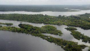 Amazônia: o maior ativo ambiental do planeta responde apenas por 8% do PIB nacional