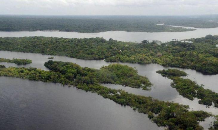 Meta é diminuir a emissão de 668 milhões de toneladas de dióxido de carbono na Amazônia e no Cerrado (Foto: Valter Campanato/Agência Brasil)